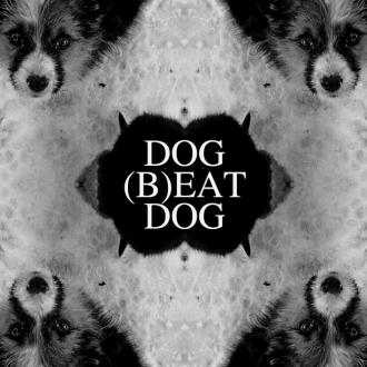dog beat dog
